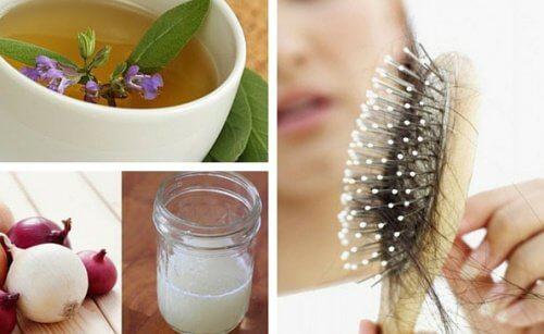 5 impacchi naturali per frenare la caduta dei capelli