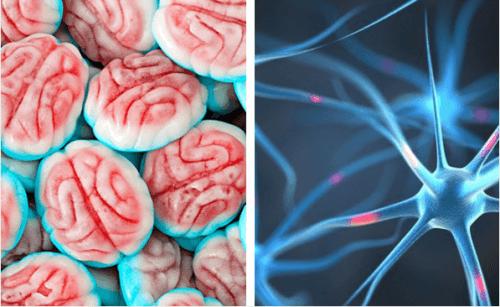 Come reagisce il cervello all'assenza di zucchero