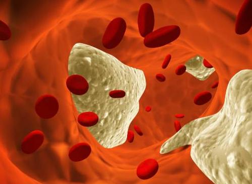 Colesterolo-nel-sangue