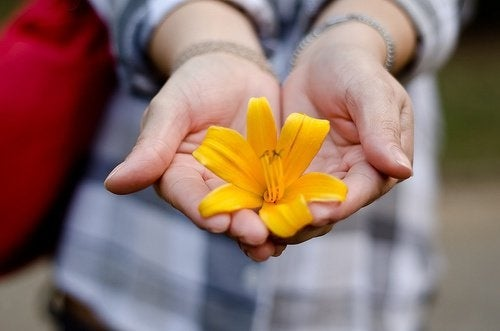 mani giovani con fiore