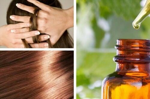 Sieri naturali per nutrire e riparare i capelli da fare in casa