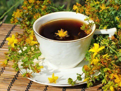 tazza con erba di san giovanni