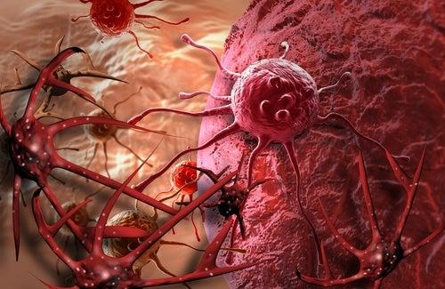 cellule tumorali screening mammografico