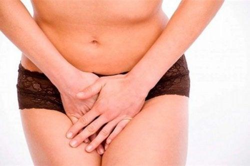 l'equiseto combatte le infezioni vaginali