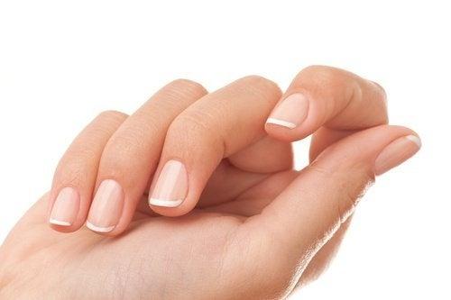 l'equiseto migliora la salute delle unghie