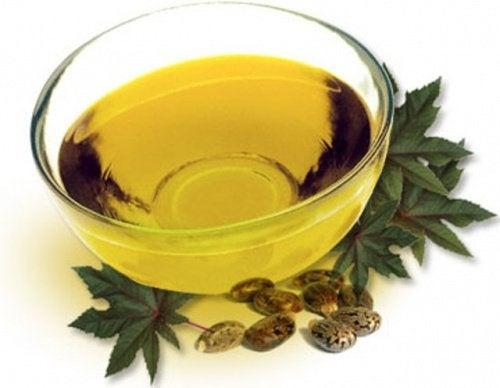 olio, foglie e semi di ricino