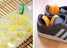 scarpe e buccia d'agrumi