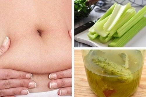Tisana al sedano: è realmente utile per perdere peso?