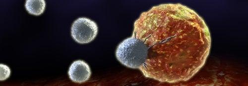 cellula-cancerogena-500x174