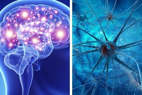 5 abitudini che danneggiano la mente
