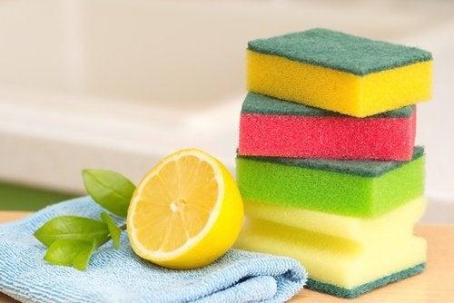 limone e spugne da cucina