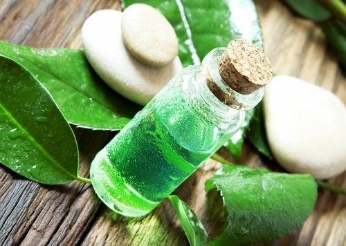 Olio essenziale dell'albero del tè