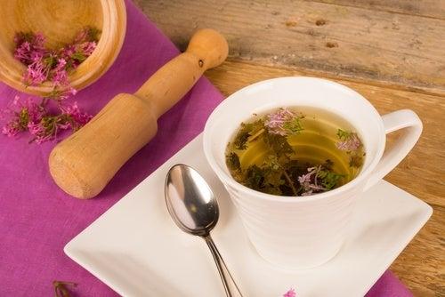 Sintomi comuni della menopausa: le erbe più efficaci