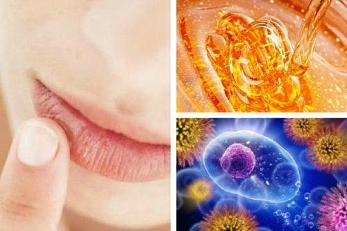 Miele biologico: 10 meravigliosi benefici