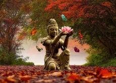 Budda- il vostro amore