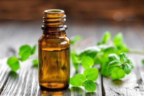 olio essenziale di menta