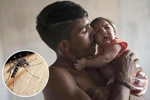 Allarme virus Zika: 10 cose che dovete sapere