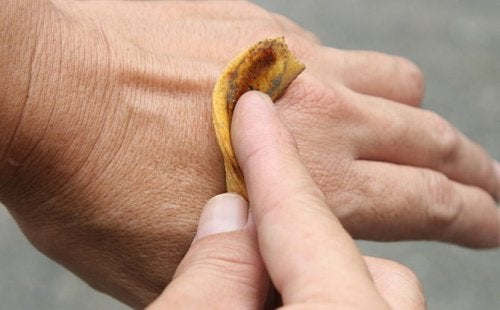 9 usi della buccia di banana