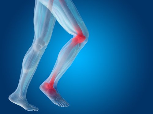 cartilagine piede e gamba