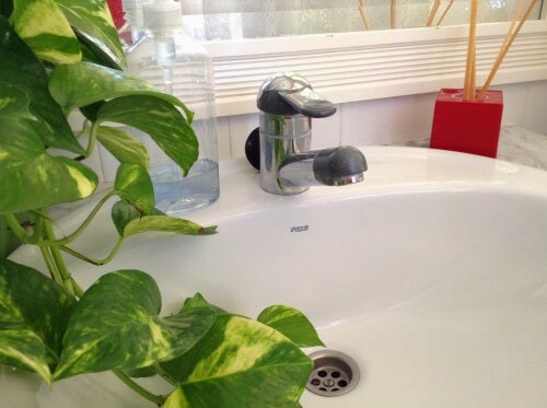 Come eliminare il cattivo odore dalle tubature vivere più sani