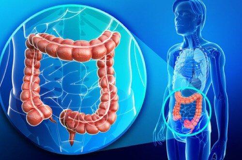 Depurare il colon in modo naturale