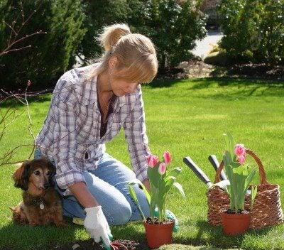 Donna che cura il giardino