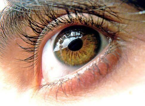 La sindrome dell'occhio secco: 5 rimedi naturali