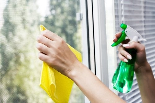pulire vetri senza prodotti chimici