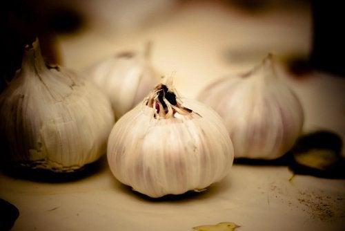 Benefici dell'aglio a digiuno