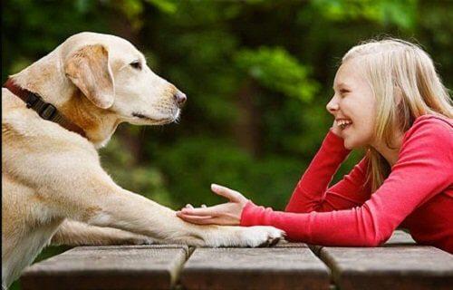 bambina e cane impieghi del limone
