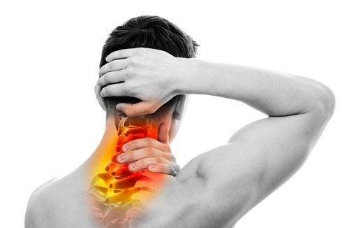 relazione fra colonna vertebrale e le altre parti del corpo
