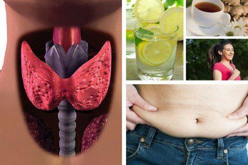 perdere peso tiroide