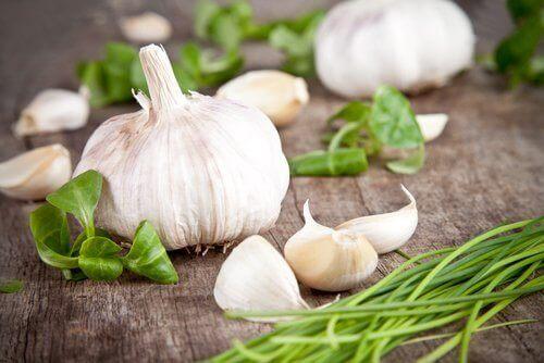 Testa d'aglio