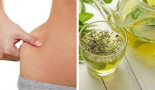 tè verde dimagrire
