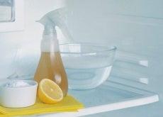 vaporizzatore-limone-frigorifero