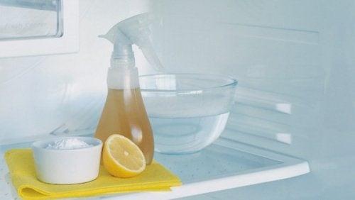 Trucchi per pulire il frigorifero ed eliminare i cattivi odori