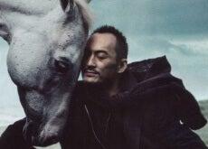 essere allegri cavallo e uomo