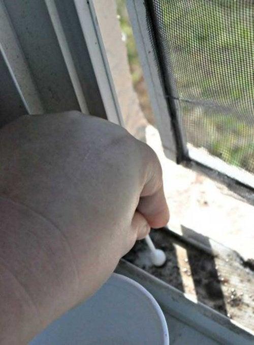 finestra pulizie di casa