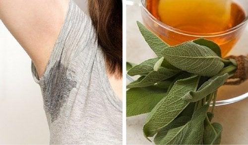 6 rimedi naturali per controllare la sudorazione