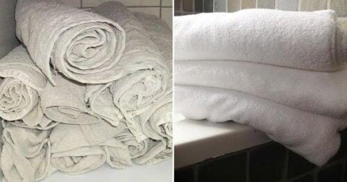 Trucco per far tornare gli asciugamani come nuovi