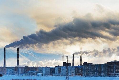 contaminazione dell'aria frullato disintossicante