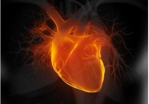 Sintomi di insufficienza cardiaca