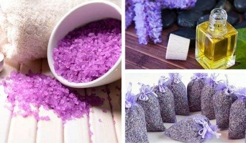 Lavanda, 10 modi per usarla a casa, in cosmesi e in medicina