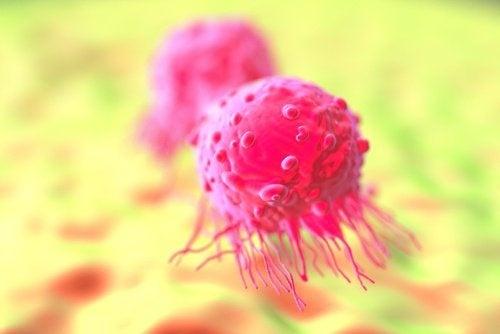 morte cellulare programmata tumore
