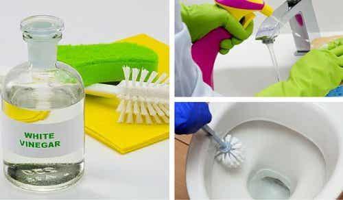 6 modi per pulire il bagno con l'aceto bianco