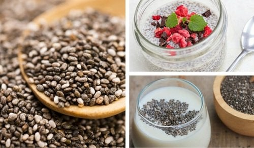 semi di chia e yogurt