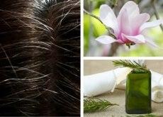 tinte naturali per coprire capelli bianchi
