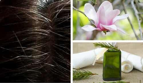Tinte naturali: eccone 6 per coprire i capelli bianchi