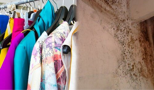 Trucchi economici per eliminare l'odore di muffa dai vestiti