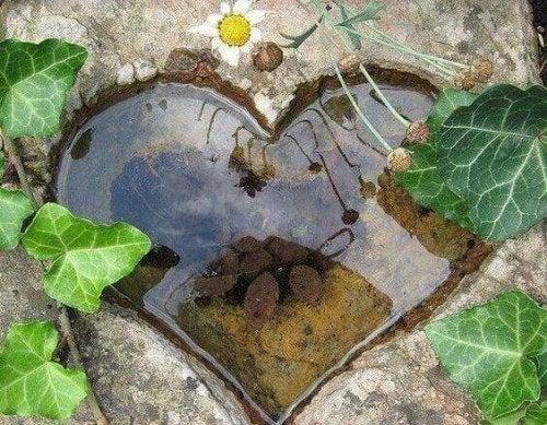 pozzanghera a forma di cuore  la solitudine